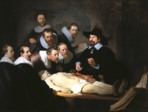 anatomische les
